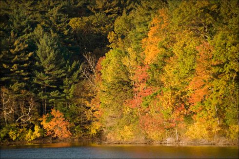 Walden Pond colour