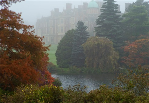 Foggy view across the lake