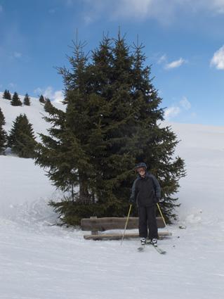 Charles Tree (1 of 1)