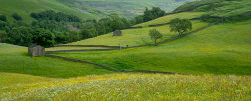 Meadows, walls, moors