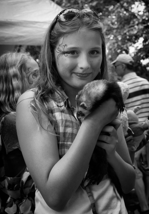 Where else can you hold a ferret?