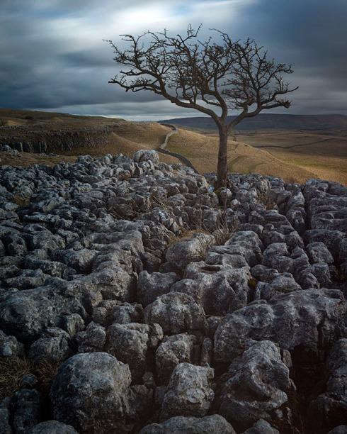 Yorkshire limestone
