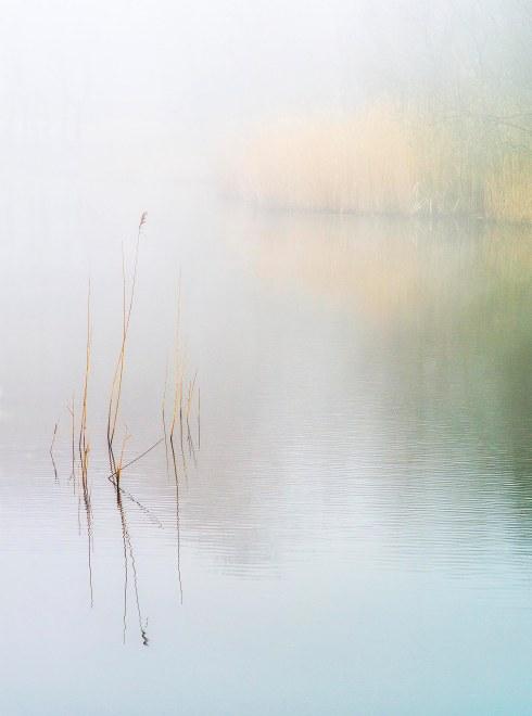 Wake Valley Pond mist_press